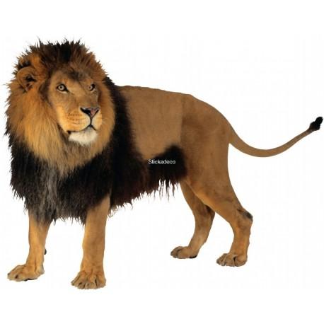 Sticker Lion 3
