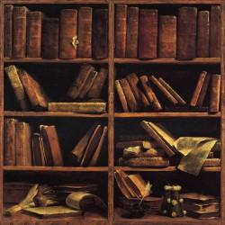 Sticker boites aux lettres déco vieille bibliothèque 30x30cm
