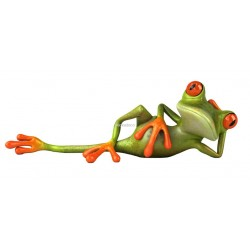 Sticker Grenouille Tranquille