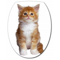 Sticker Abattant de WC Chaton
