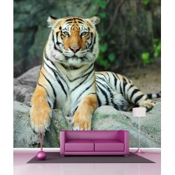 Papier peint géant déco tigre 250x250cm