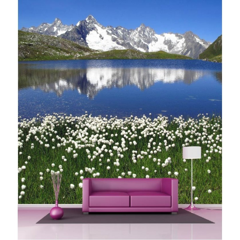 papier peint g ant d co vue sur la montagne 250x250cm art d co stickers. Black Bedroom Furniture Sets. Home Design Ideas