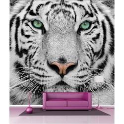 Papier peint géant déco tigre blanc 250x250cm