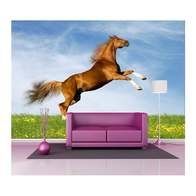 papier peint g ant d co saut cheval 250x360cm art d co stickers. Black Bedroom Furniture Sets. Home Design Ideas