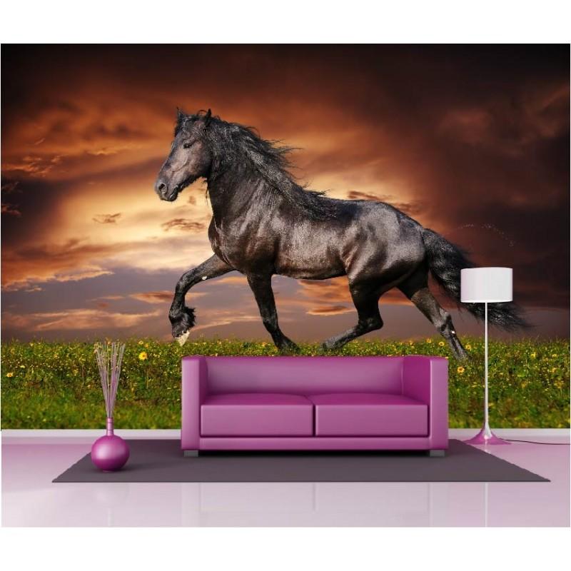 papier peint g ant d co cheval 250x360cm art d co stickers. Black Bedroom Furniture Sets. Home Design Ideas