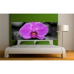 Stickers tête de lit Orchidée