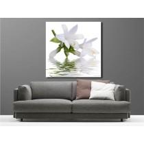 Tableaux toile déco carré orchidée blanche