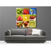 Tableaux toile déco carré multifruits