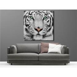 Tableaux toile déco carré tigre blanc