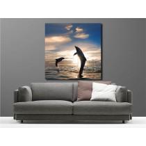 Tableaux toile déco dauphins