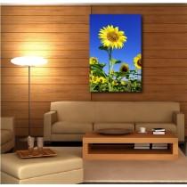 Tableaux toile déco rectangle verticale Fleurs de Tournesol