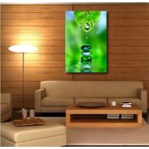 Tableaux toile déco rectangle verticale feuille et goutte d'eau