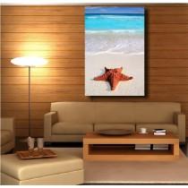 Tableaux toile déco rectangle verticale étoile de mer