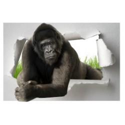Sticker Trompe l'oeil Gorille