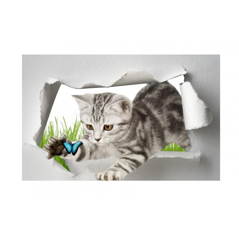 sticker trompe l 39 oeil chat papillon art d co stickers. Black Bedroom Furniture Sets. Home Design Ideas