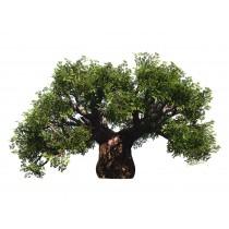 Sticker Baobab