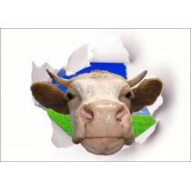 Sticker Trompe l'oeil Tête de Vache