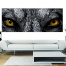 Stickers panoramique Yeux de loup