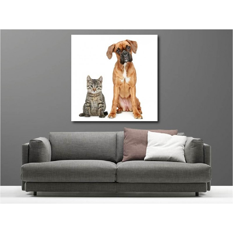 tableaux toile d co chien et chat art d co stickers. Black Bedroom Furniture Sets. Home Design Ideas