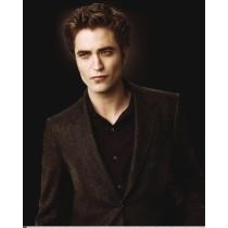 Affiche poster Twilight Edward
