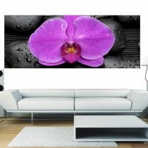 Stickers panoramique Fleur