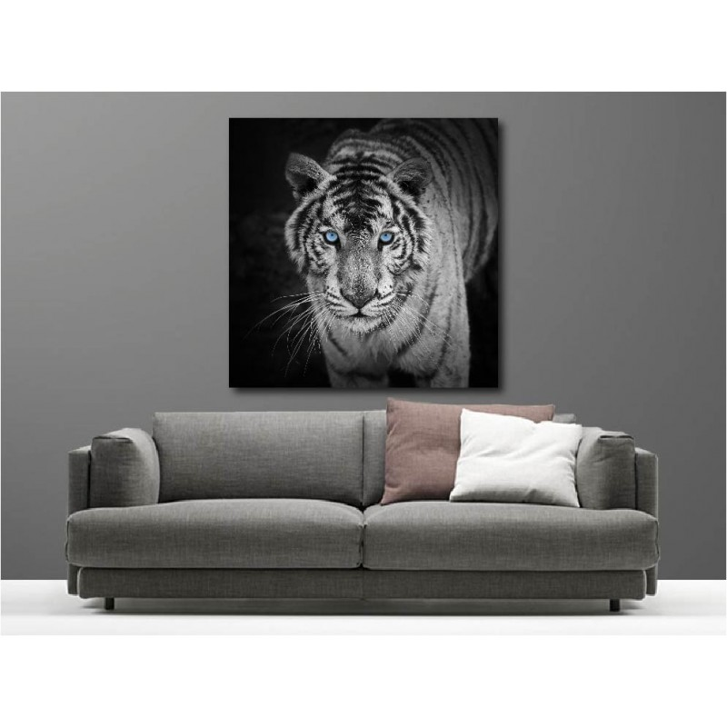 tableaux toile d co carr tigre blanc art d co stickers. Black Bedroom Furniture Sets. Home Design Ideas