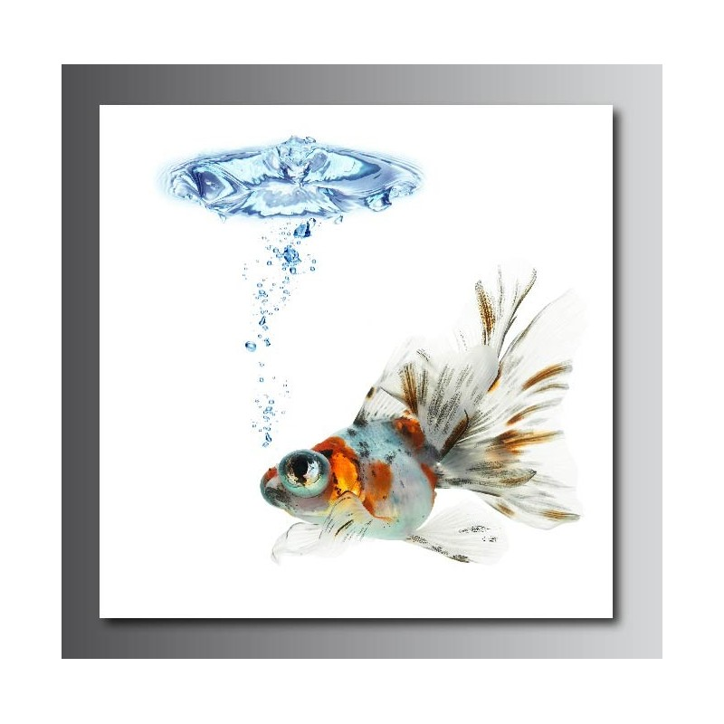 Tableaux toile d co carr poisson rouge art d co stickers for Deco poisson rouge