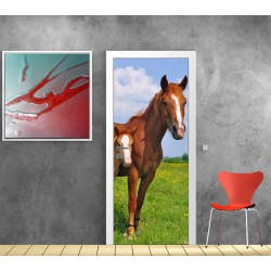 Stickers porte Cheval Poulain
