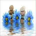 Sticker Lave Vaisselle Fleurs Bleus et galets