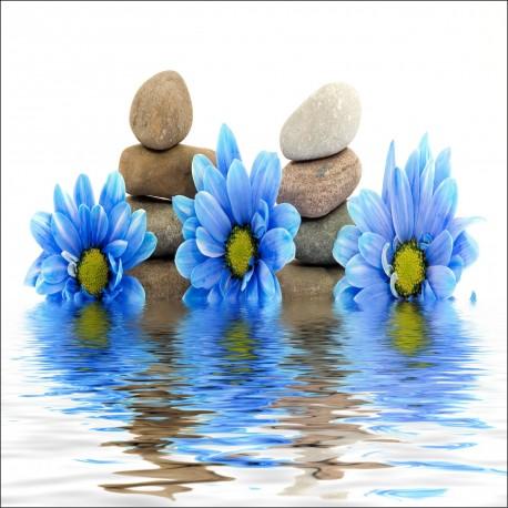 Sticker Lave Vaisselle Lave Vaisselle Fleurs Bleus et galets