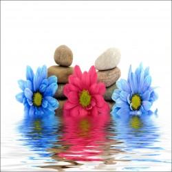 Sticker Lave Vaisselle Fleurs multicolore et galets