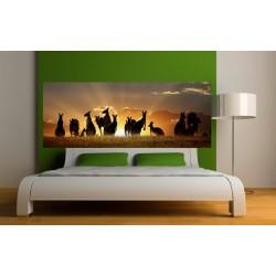 papier peint t te de lit kangourou art d co stickers. Black Bedroom Furniture Sets. Home Design Ideas