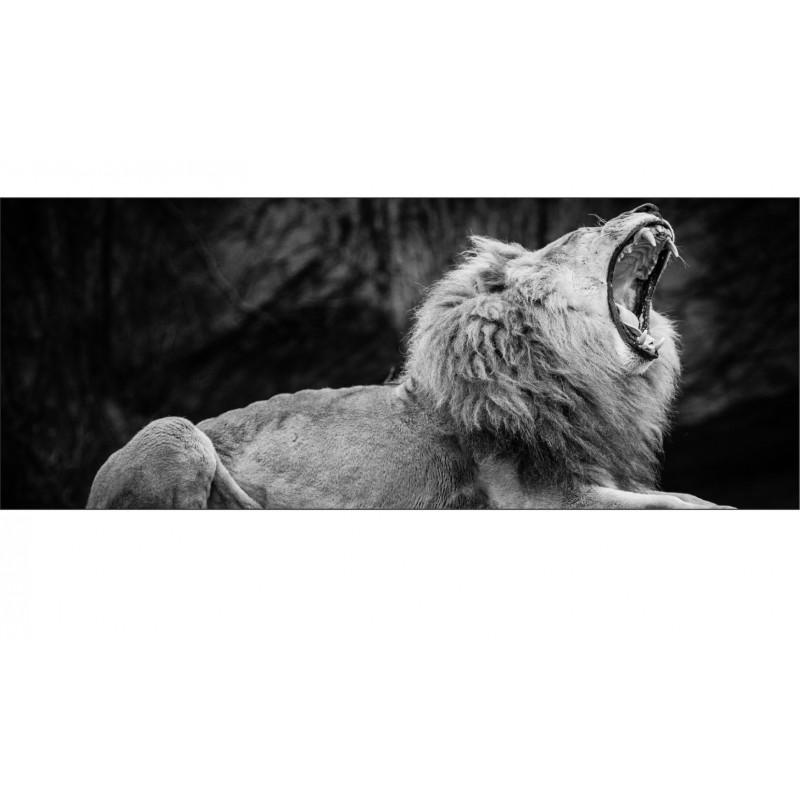 papier peint t te de lit lion noir blanc art d co stickers. Black Bedroom Furniture Sets. Home Design Ideas