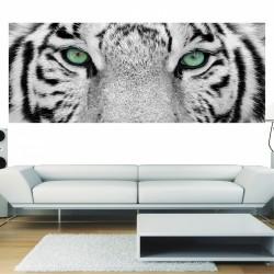 Papier peint panoramique yeux de tigre