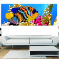 papier peint panoramique poisson exotique art d co stickers. Black Bedroom Furniture Sets. Home Design Ideas