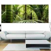 Papier peint panoramique Bambous