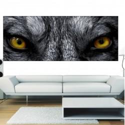Papier peint panoramique oeil de loup