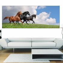 Papier peint panoramique chevaux