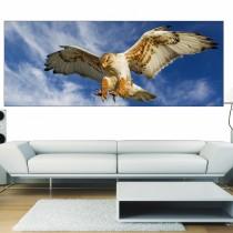 Papier peint panoramique Aigle