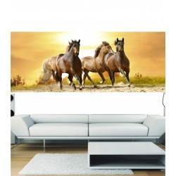 Stickers panoramique chevaux au galop