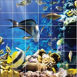 Stickers carrelage mural déco poissons exotique