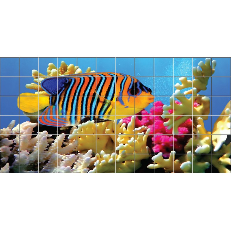 stickers carrelage mural poisson mer rouge art d co stickers. Black Bedroom Furniture Sets. Home Design Ideas