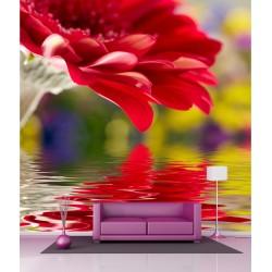 Stickers géant déco : Reflet fleur sur eau