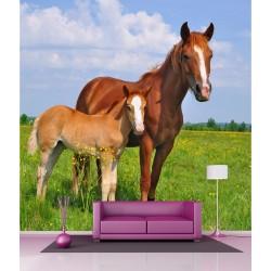 Stickers géant déco : Jument et poney