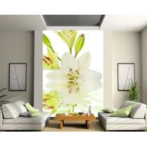 Sticker mural géant Fleur sur l'eau