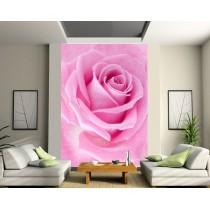 Sticker mural géant La Rose