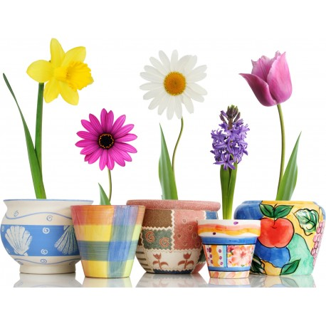 Sticker Pots et Fleurs