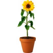Sticker Pot de Fleur Tournesol