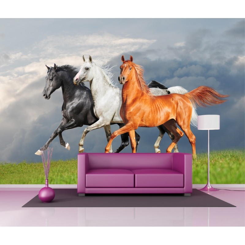 papier peint g ant d co les chevaux 250x360cm art d co stickers. Black Bedroom Furniture Sets. Home Design Ideas