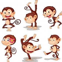 Stickers kit enfant planche de 6 singes